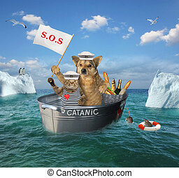 The two brave sailors cat and dog are drifting in the steel wash tub after the shipwreck among the icebergs in the sea. Their lifeboat is called Catanic.