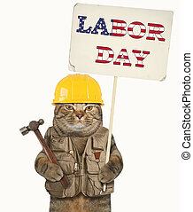Cat and labor day 3