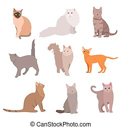 Cat big set. Beautiful cartoon cats isolated on white. Vector