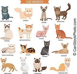 Cat breed set
