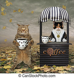 Cat buys coffee in park