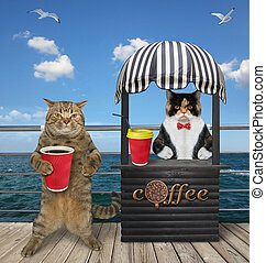 Cat buys coffee in seafront 2 - The beige cat buys a plastic...