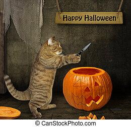 Cat carves pumpkin for Halloween 2