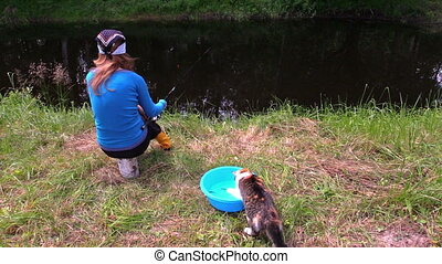 cat catch fish eat bowl