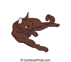 cat color, vector