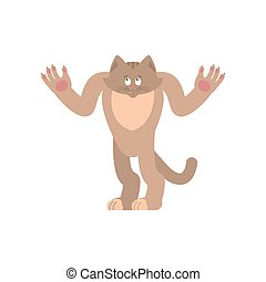 Cat confused oops. Pet perplexed emotions. kitty surprise. Vector illustration