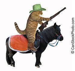 Cat cowboy on a black horse 2