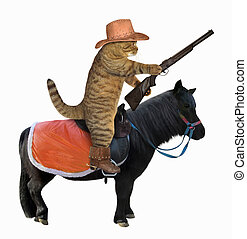 Cat cowboy on a black horse