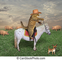 Cat cowboy with his dog on the ranch