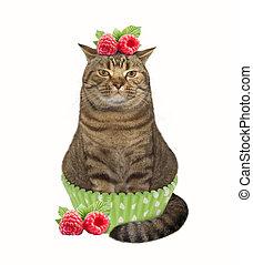 Cat cupcake 1