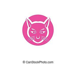 Cat cute pet animal set vector illustration