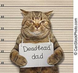 A scottish straight cat is a deadbeat dad.