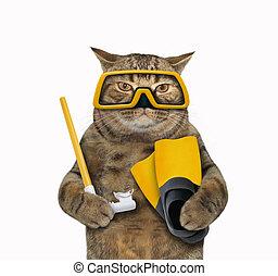 Cat diver 1