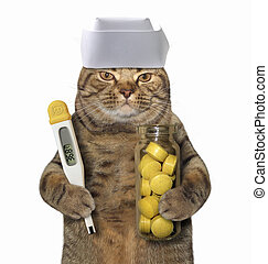 Cat doctor with thermometer