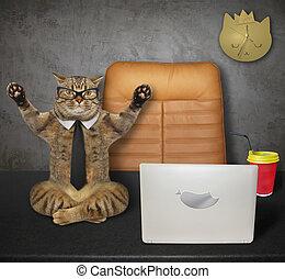 Cat doing yoga on desk 2
