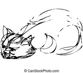 cat dozing on the floor