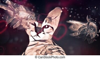 Cat Dreams. Floating fish and lens flare animation