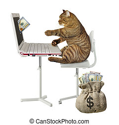 Cat earns money on the computer 2