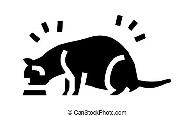 cat eating food animated glyph icon. cat eating food sign. isolated on white background