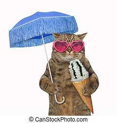 Cat eats ice cream under an umbrella 2