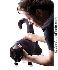 cat examination