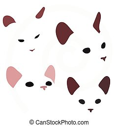 cat faces isolated on white background