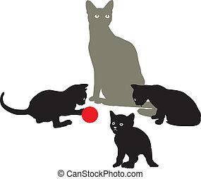 Cat Family at play