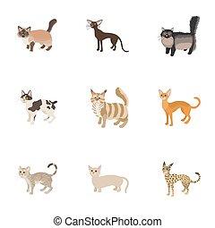 Cat family icons set, cartoon style
