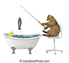 Cat fishing in bathtub - The beige cat fisher is sitting on ...
