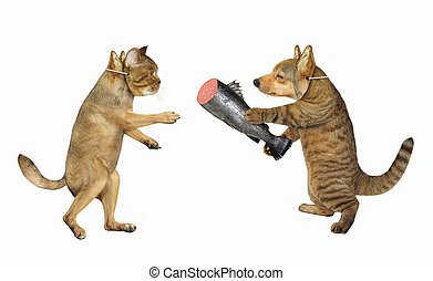 Cat gives dog fish sausage 2 - The cat in a dog mask gives ...