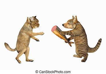 Cat gives dog fish sausage - The cat in a dog mask gives the...