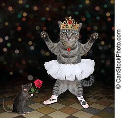 Cat gray ballet dancer in crown 3