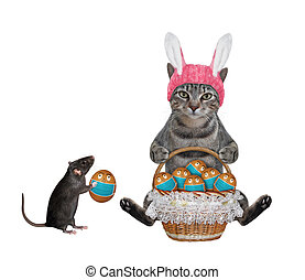 Cat gray in easter bunny hat with eggs