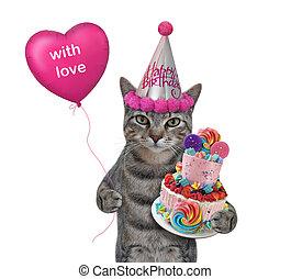Cat gray in hat celebrates birthday 2