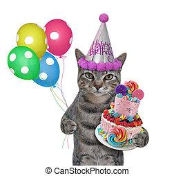 Cat gray in hat celebrates birthday 3