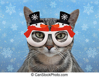 Cat gray in holiday glasses 2