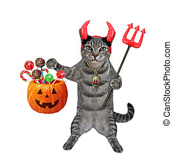 Cat gray in red horns holds pumpkin 2