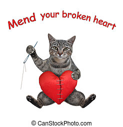 Cat gray mends broken heart 2