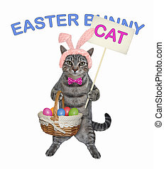 Cat gray with basket of easter eggs 2