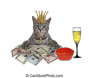 Cat gray with dollars and caviar 2