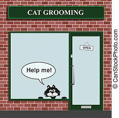 cat grooming establishment - Reluctant feline not happy to...