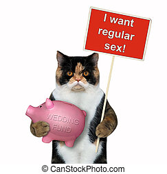 Cat holding a piggy bank and a sign