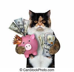Cat holding a pink piggy bank