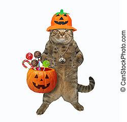 Cat holding pumpkin basket 2