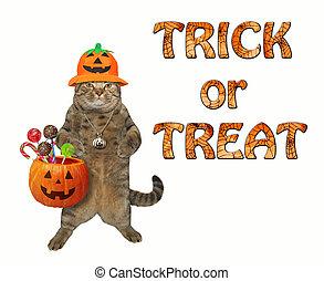 Cat holding pumpkin basket