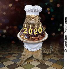 Cat holds 2020 Christmas cake