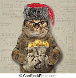 Cat holds a sack of gold hryvnia 2
