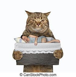 Cat holds a sleeping man