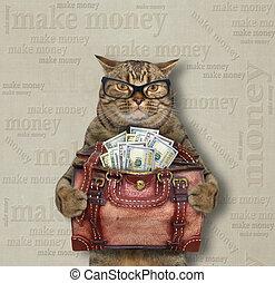 Cat holds bag full of money 2