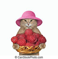 Cat holds basket of raspberries 2